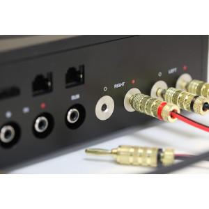О Sonos Amp