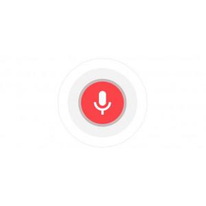Голосовое управление аккустикой Sonos